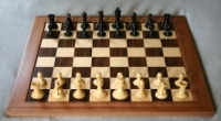 19TRA137 Teaching Chess in Primary Schools